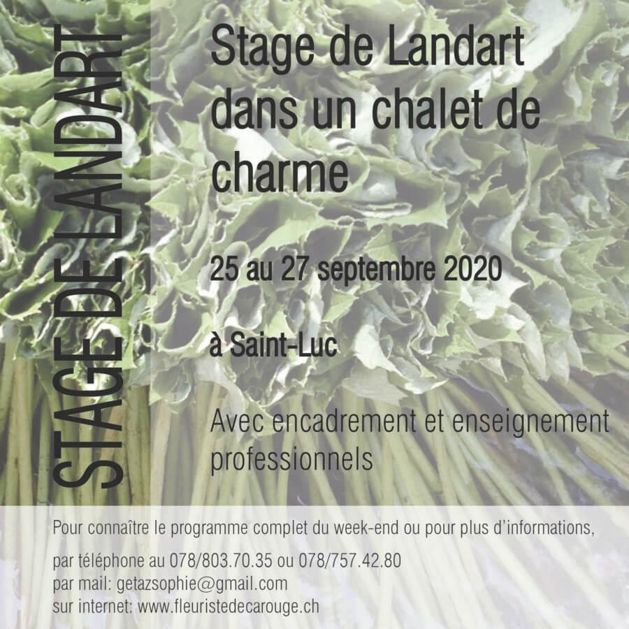 Stage de Landart à Saint-Luc